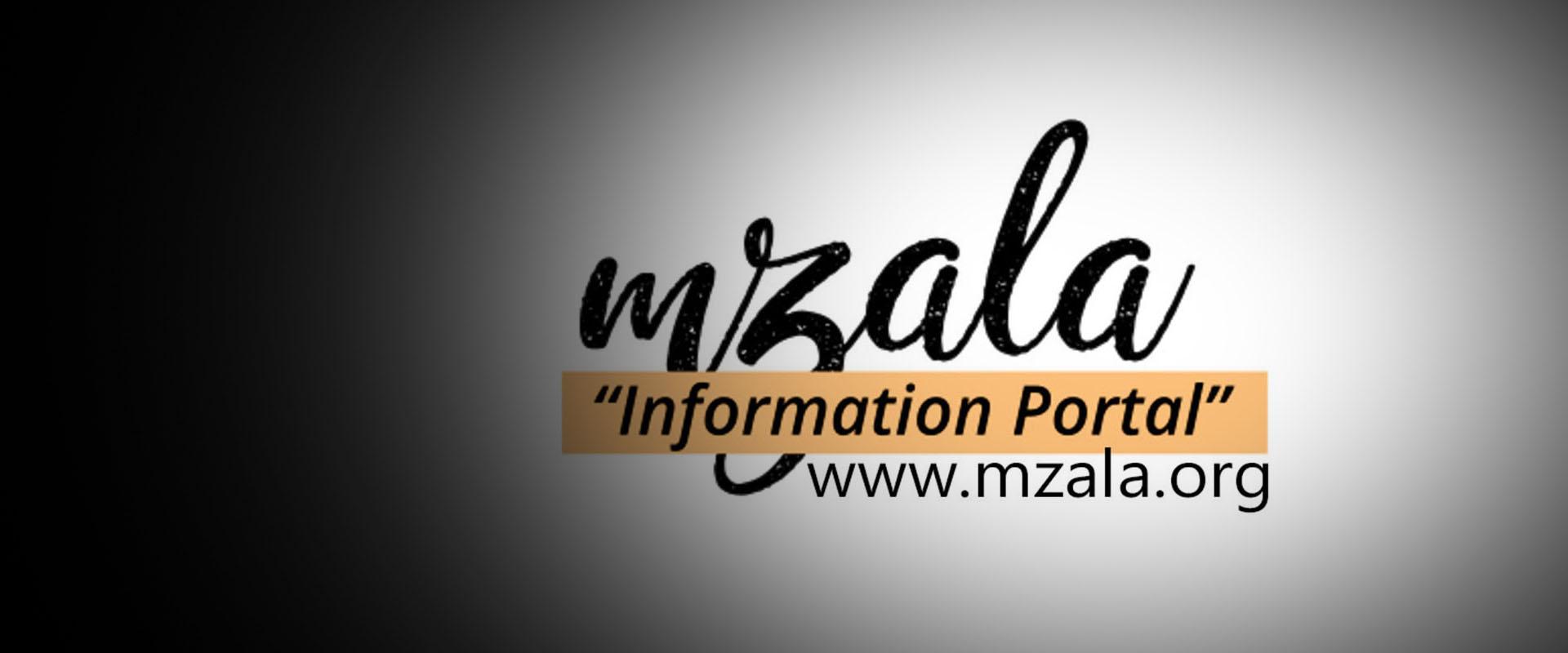 Mzala Information Portal - Intellectual Fountations